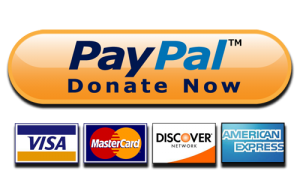 PayPalDonateNow1[1]